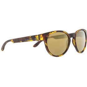 Red Bull SPECT Wing4 Lunettes de soleil, havanna/brown-gold